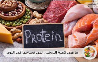 ما هي كمية البروتين التي نحتاجها في اليوم