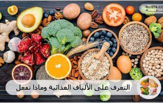 التعرف على الألياف الغذائية وماذا تفعل